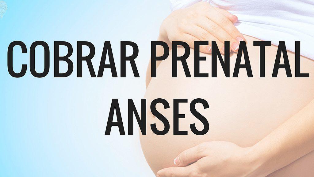 Fecha de cobro Asignación por Prenatal