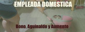 ¿Que cobra las Empleadas Domésticas?: BONO, AGUINALDO y AUMENTO