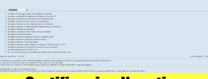 Bono de $10000: Como sacar la Certificación negativa de ANSES